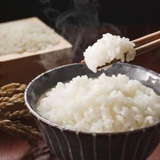 美味しい白米!熊本産白米15kg