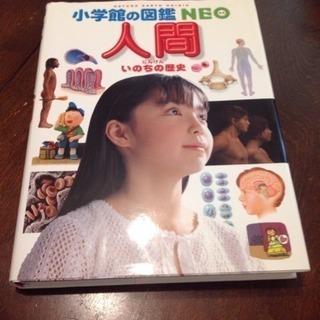 小学館の図鑑 NEO  人間