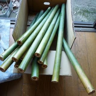 女竹の生えているところをお教えください。