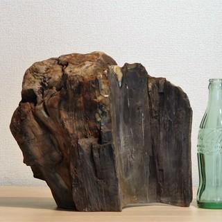 珪化木8.8㎏  アリゾナ産木化石