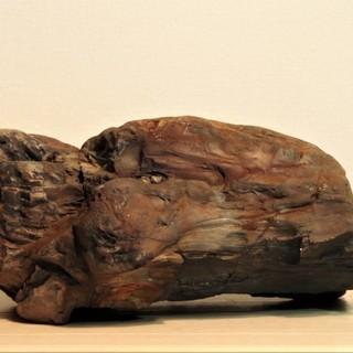 珪化木10.3㎏  アリゾナ産木化石