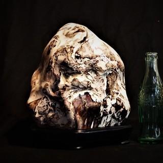 珪化木11㎏  アリゾナ産木化石 木台