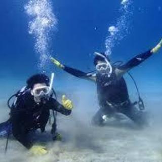 まずは体験ダイビングから!