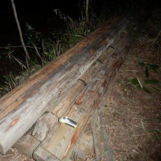 貰ってください。薪に、工作に、納屋を壊した廃材。長いままです