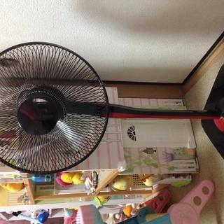 扇風機(中古)800円(引取中)