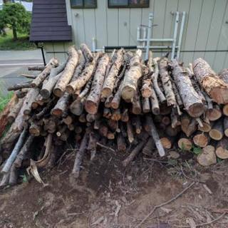 薪 カラ松、栗、他雑木の枝、丸太等の薪材 薪ストーブなどに