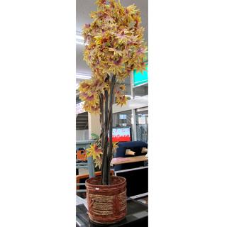 ディスプレイ用品 秋の装い 紅葉の立木 カゴ付き 西宮の沢