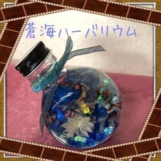 ハーバリウム手作り☆彡.。 蒼海色の画像