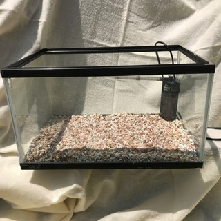 亀の水槽セット