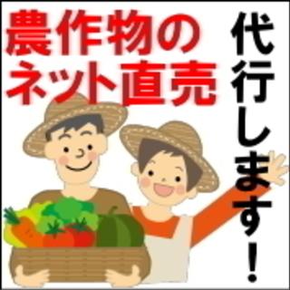 農作物をインターネットで販売します!