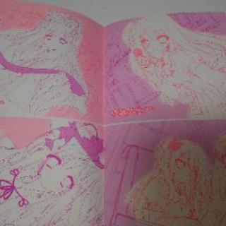 アネモネ増刊「タマユラ2-AfterStories-ラフタマ」小冊子 - 本/CD/DVD