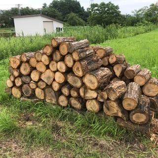 薪、玉切り済みナラ