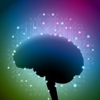 脳トレーニングでいつも頭すっきり! 高齢者の認知予防に!