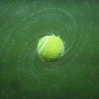 京都市北部で一緒に硬式テニスしませんか?土日。場所:京都市の 北大...