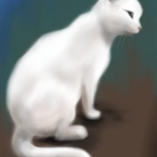 【スカイプでレッスン】パソコンで描く絵画教室