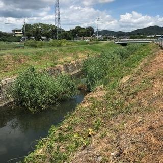 【簡単・軽作業】愛知/幸田町  川辺の草刈りのお手伝い募集!