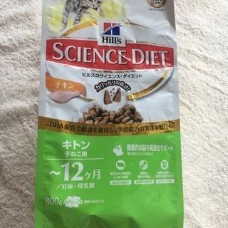 子猫用 SCIENCE DIET