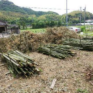 竹林伐採・雑木林伐採・草刈10㎡1万円より!