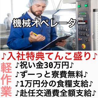 お仕事探しお急ぎの方注目です!! 本日面接→即入寮可能!! レ...
