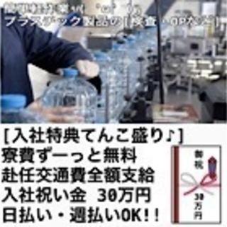 【転職応援強化月間】 私、求人担当 藤橋(フジハシ)がイチオシす...