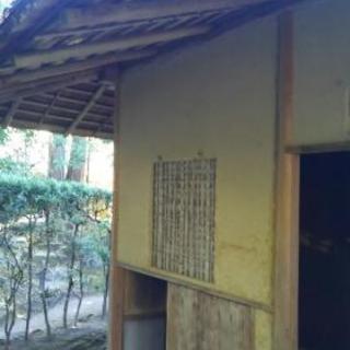 【第2回】北山台杉収穫カワムキ体験
