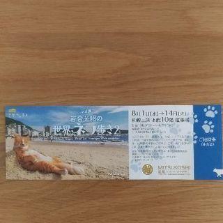 世界のネコ歩き2 写真展招待券 札幌三越