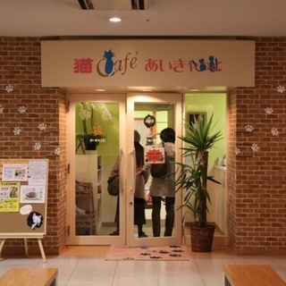 8月25日(土) 猫カフェ街コンパーティー