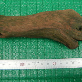 値下げ! 珍しい!!自然が作った恐竜顔の流木??