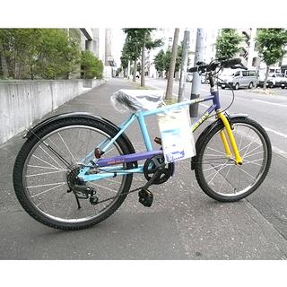 PayPay決済OK National新品【22インチ 自転車 ...