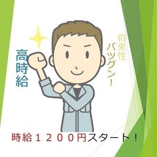 【高時給】1200円スタート