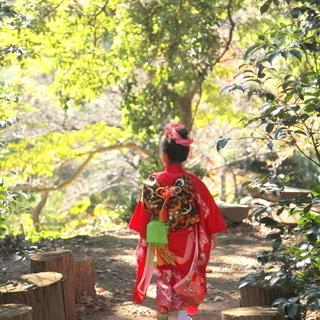 鎌倉市梶原 葛原岡神社の七五三撮影(事前予約制)