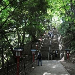 8月18日(土) 高尾山パワースポットナイトウォーキング登山コン...