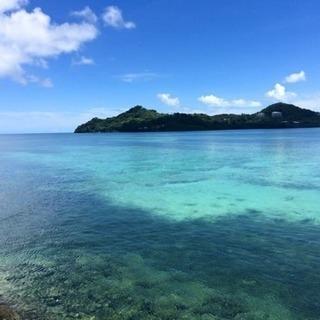 沖縄を感じて楽しく書道しませんか?