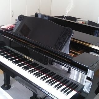 【期間限定キャンペーン】無料体験レッスン+お月謝1ヵ月無料 ピアノ