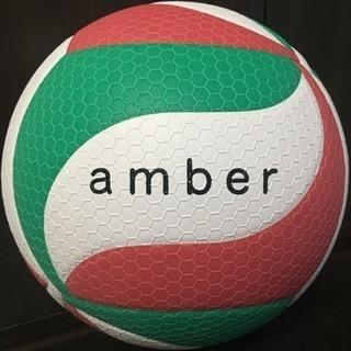 amber(男女混合バレーボールチーム)メンバー募集!!