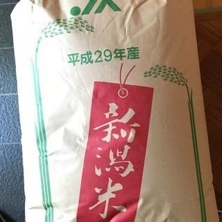 米、玄米、コシヒカリ30kg