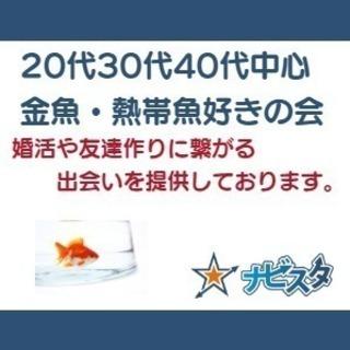 東京 金魚・熱帯魚好き
