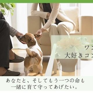 10.13sat  ワンにゃん大好きコン byご縁チャンネル