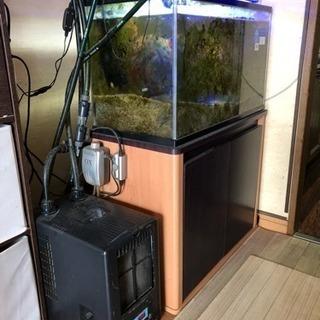 海水魚飼育セット
