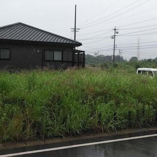 知多市で草刈り!