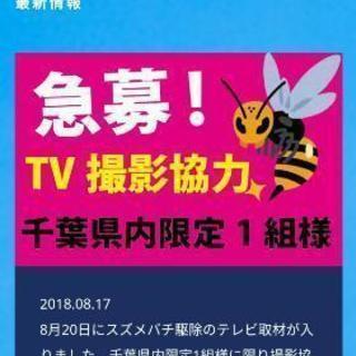 急募※ハチの巣駆除※TV撮影協力してくれる方!!