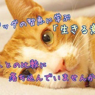 ★6/21(金)他人との比較で落ち込む必要がなくなる 幸せのメカ...