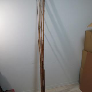 竹素材 竹竿など自作用に 約9本 1m~2m