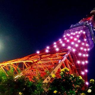 8月26日(日) 満月の日限定!フルムーン夜景とスペシャルライト...