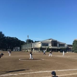ソフトボールチームメンバー募集!