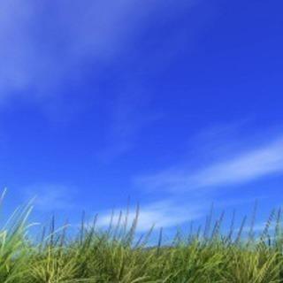 【経験者求ム】草刈り作業スタッフ募集‼️