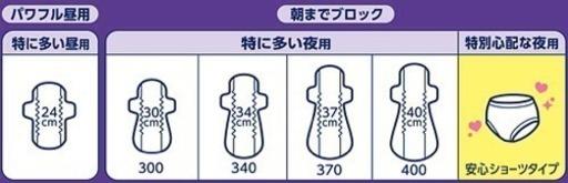 ロリエ 超吸収ガード 安心ショーツタイプ ひかる 熊本のその他の中古