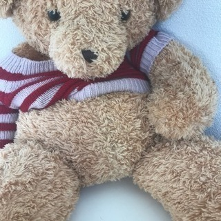 熊のおもちゃ 0円