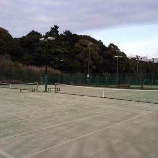 硬式テニス仲間募集