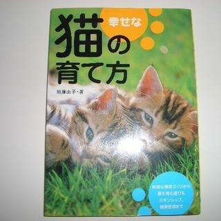 幸せな猫の育て方  加藤由子著 大泉書店 1000円
